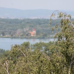 Pohled na Mušovský Kostelík